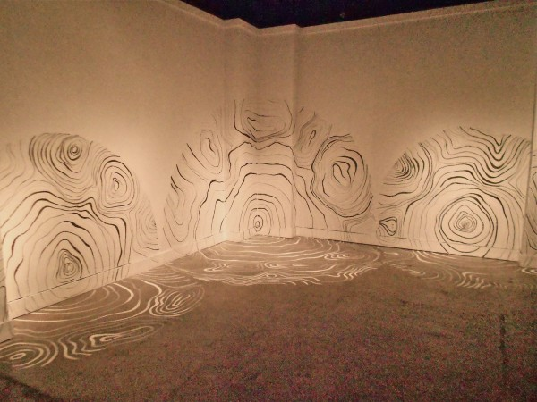 Tree Maps, 2012, charcoal on walls. Dimensions variable. Location: Bakehouse Art Complex-MIami