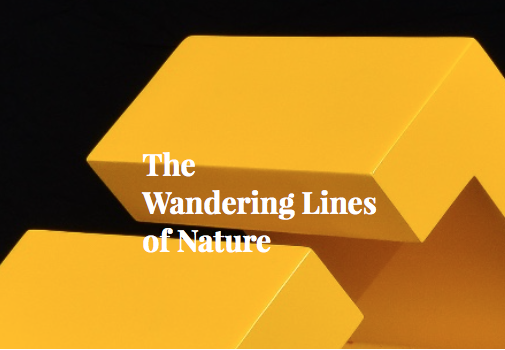 The Wandering Lines of Nature at Ideobox Artspace @ Ideobox Artspace | Miami | Florida | United States