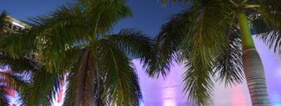 Free First Thursdays Starry Nights @ NSU Art Museum Ft. Lauderdale